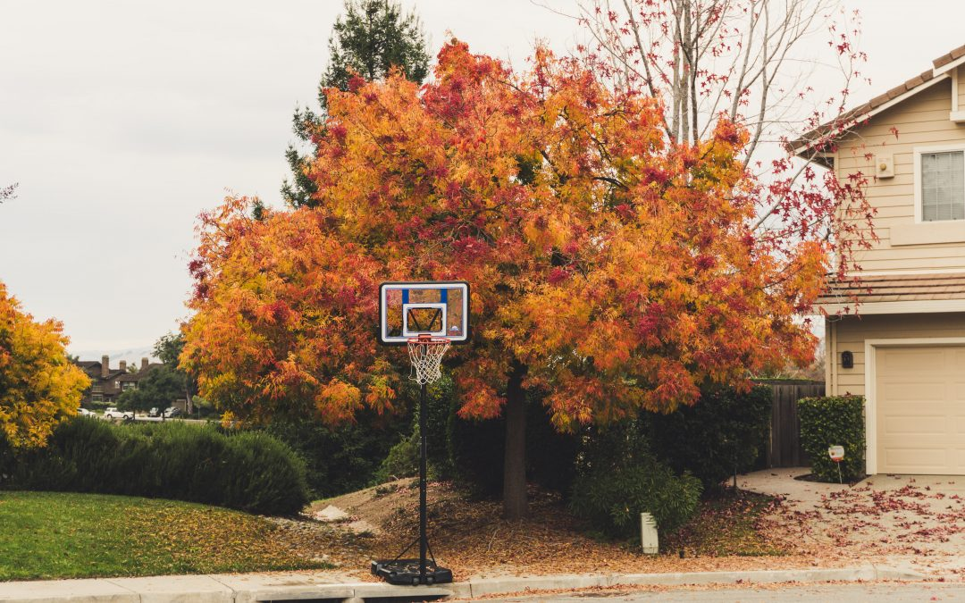 The Autumn Home Maintenance Checklist You Need Today